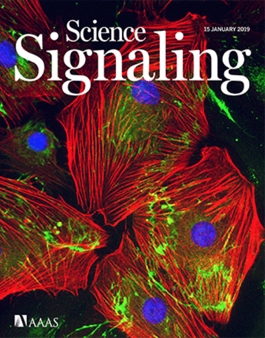 science signalling journal cover
