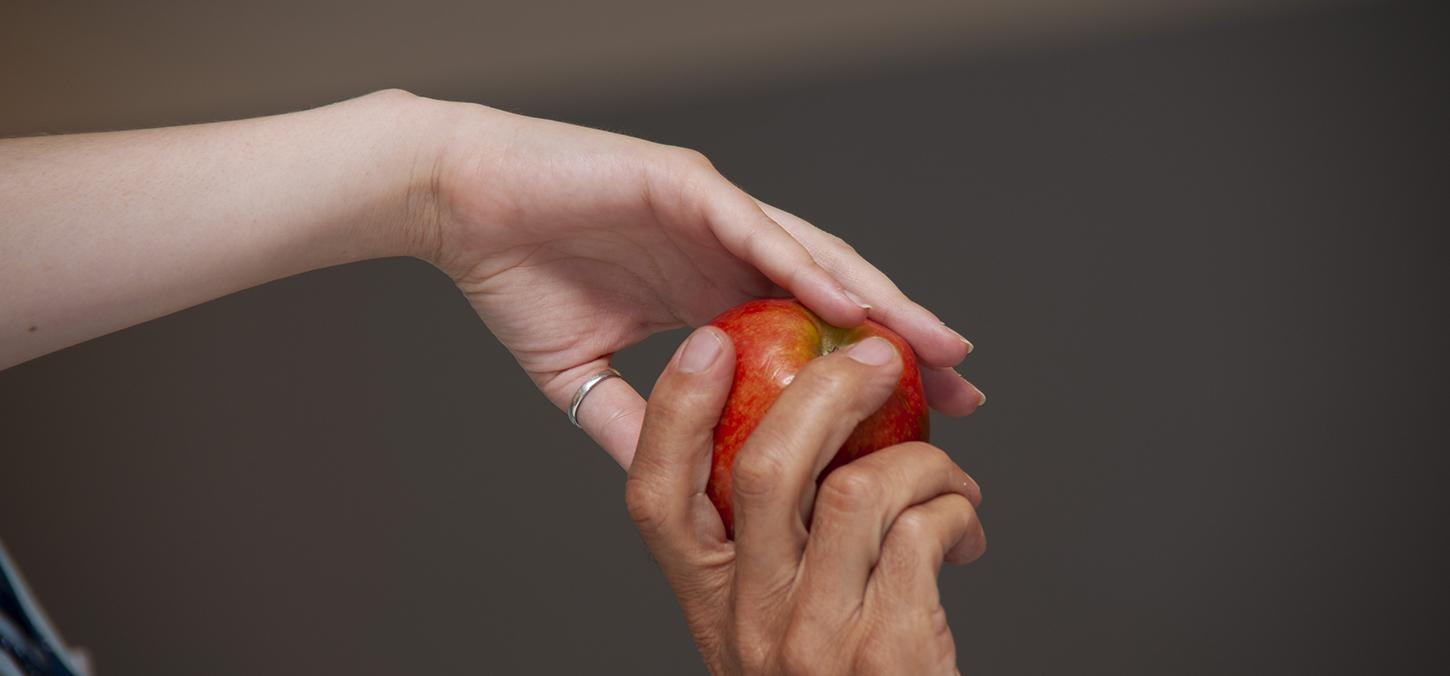 two hands come together to grip a red apple